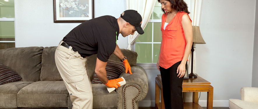 New Hyde Park, NY carpet upholstery cleaning