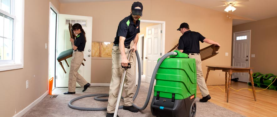 New Hyde Park, NY cleaning services